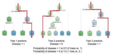 aggregates thousands of decision trees to identify the most important predictors of an outcome and