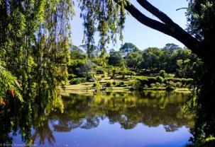 Vumba Botanical Gardens Zimbabwe is a landlocked country located in Southern Africa that shares its borders with South Africa, Botswana, Mozambique and Zambia.