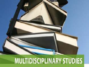 Multi Disciplinary Studies Graduation Requirements Multi Disciplinary Studies Endorsement OPTIONS Advanced Coursework Foundation Subjects Advanced Placement, International