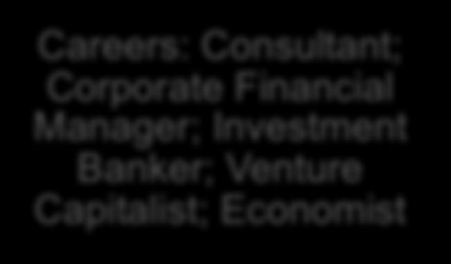 Corporate Financial Manager;
