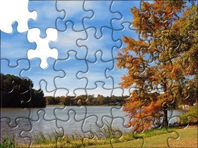 Project SHINE helped figure out where my piece fits inside the puzzle! http://2.