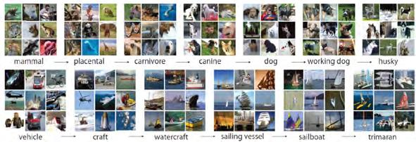Big Data : the image net database (Deng et al., 2012) ImageNet = 15 million labeled high-resolution images of 22,000 categories.