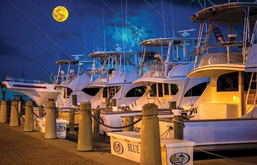 Karen Doody, Karen Doody Photography The moon over Morehead City casts a golden glow on the charter fishing boats.