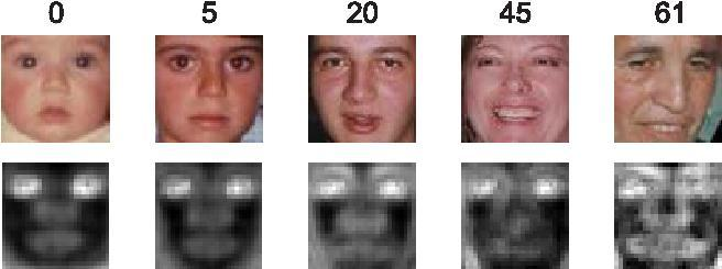 Introduction Adaboost structure (Facial Age Estimation) Extracting important features those are