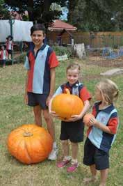 They talked about shape, colour, lines and size as well as a slater that they found wandering across the pumpkin.