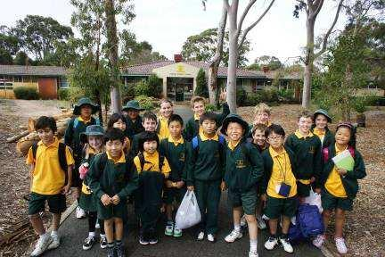 LANGUAGES OTHER THAN ENGLISH (LOTE) LEARNING AREA (JAPANESE) The students from Year 3 to Year 7 in Ardross study Japanese as a LOTE program. Mrs Rego worked 0.47 FTE (Wed, Thurs PM, Fri).
