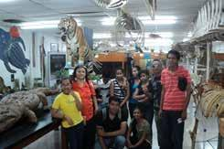 CULTURE Museum of Natural History (MHN) The Museum of Natural History began in 1970 with the help of teachers and students of the first graduating class of UNAH s Bachelor s Degree in Biology.