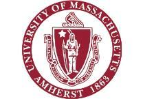 APPENDIX D: Course Substitution Form University of Massachusetts Amherst College of Engineering Department of Civil and Environmental Engineering Undergraduate Course Substitution Form Student Name: