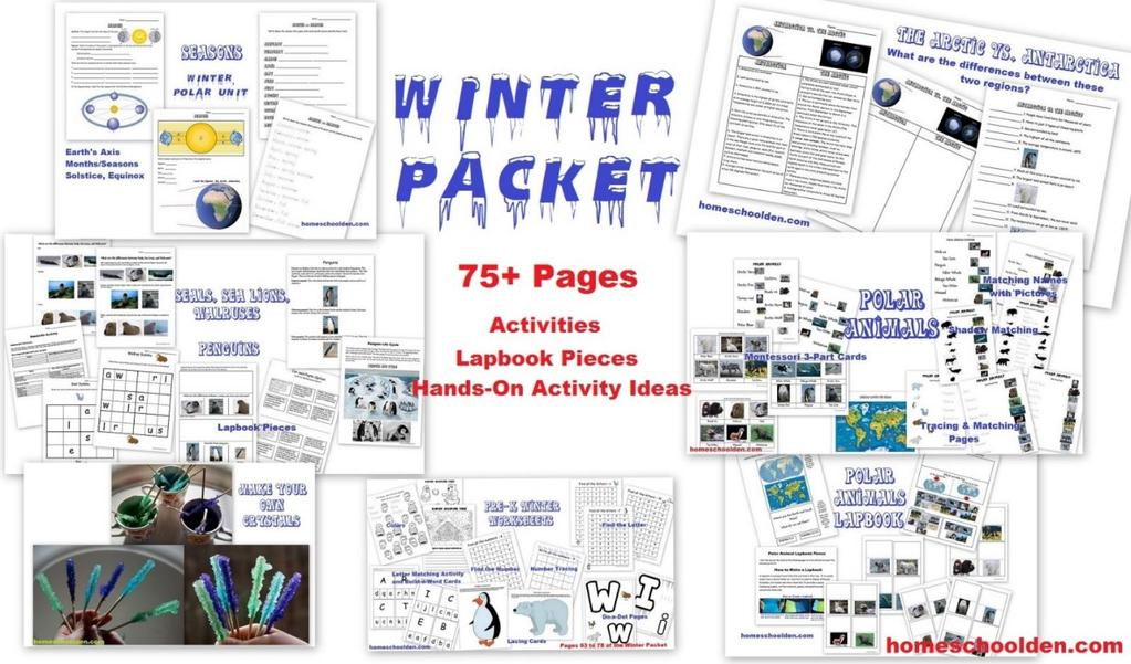 Holiday writing prompts and holiday stationery pdf axisseasons the arctic vs fandeluxe Choice Image